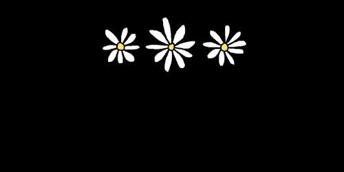 Daisy's